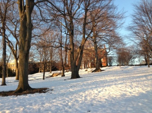 at least campus is looking really pretty... if a little soggy due to the great thaw
